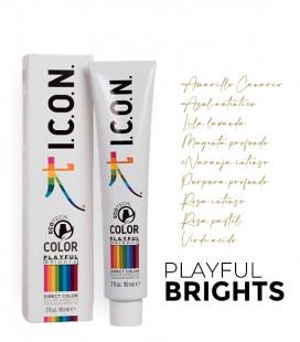 PLAYFUL BRIGHTS