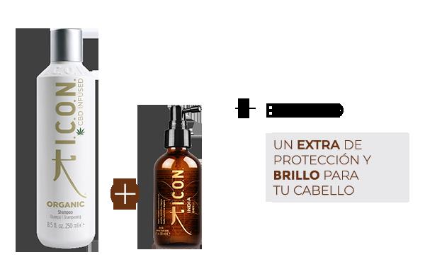 Organic Champú + Dry Oil. la combinación perfecta para obtener un brillo deslumbrante en el cabello